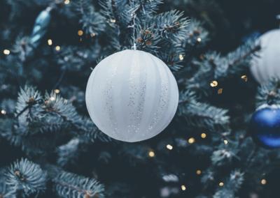 Weihnachtsbaumverkauf in Solingen