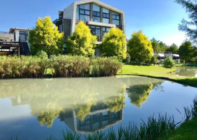 Teichanlagen und Biotope in Solingen anlegen lassen
