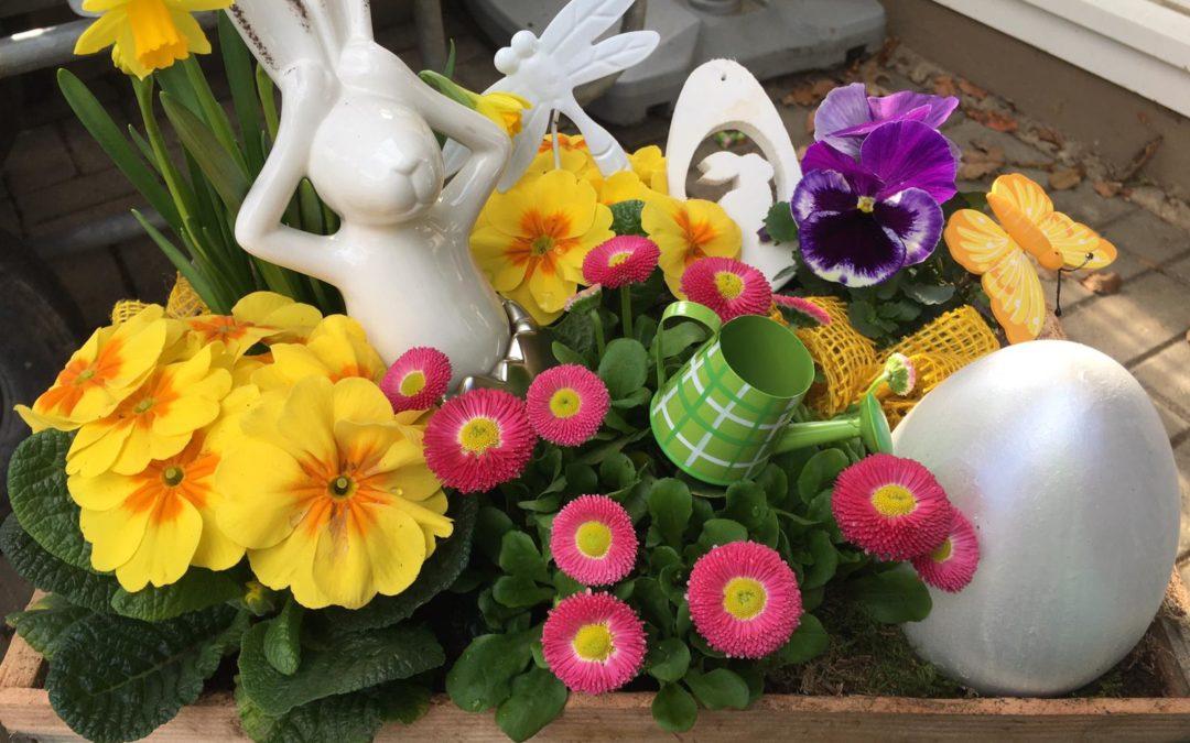 Ostern beim Blumenhaus Krause
